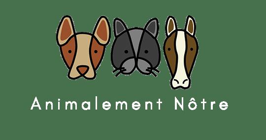 Animalement Notre - My WordPress Blog